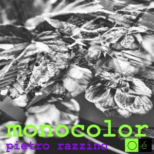 copertina Monocolor